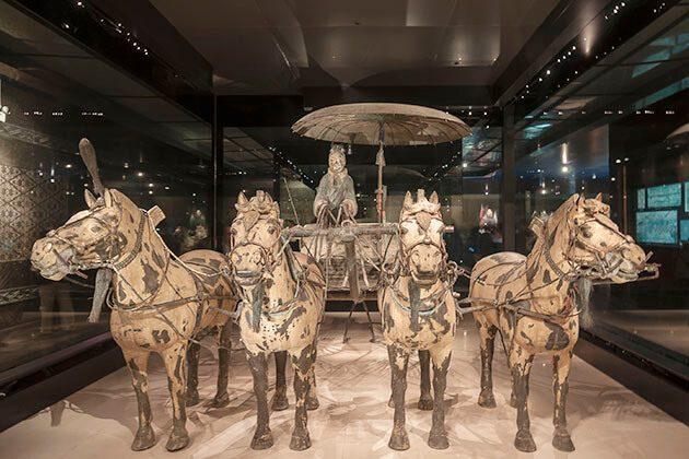 Horse Museum Xian Shanghai Shore Excursions