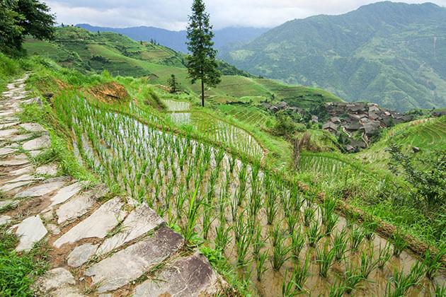 Xianggong Mountain – A Bird's Eye View of Yangshou